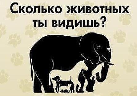 Сколько животных Ви видите на рисунке?